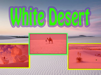 White Desert Places